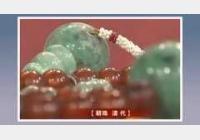 20110219收藏马未都视频和笔记:朝珠,珠子,节珠,夜明珠,佛珠,背云