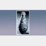 彩陶人头器口瓶的图片,尺寸,器形特征