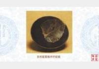 吉州窑黑釉木叶纹碗的图片,年代,特征,尺寸,纹饰