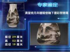 20111120一槌定音视频和笔记:琵琶尊,佛像