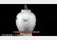 20110702收藏马未都视频和笔记:清五毒盖瓶,元印,矾红龙纹盘,压石