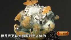 20130424寻宝视频和笔记:走进天津,林欣,翡翠,曹锟,玉象耳带环瓶