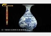 20121208收藏马未都视频和笔记:玉壶春,玛瑙扁瓶,淡描青花,斗彩盘