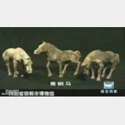 20050322国宝档案视频和笔记:青铜马(中),赵王陵,邯郸,杨巍,李强