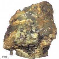 20050803国宝档案视频和笔记:鞍山玉石王(下),玉佛,玉佛苑