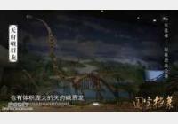 20141024国宝档案视频和笔记:千年盐都,探秘恐龙公墓,剑龙,恐龙