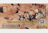 20141101国宝档案视频和笔记:赣江文韵,江边出重宝,青铜器