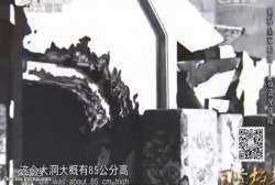 20150109国宝档案视频和笔记:揭秘皇家相