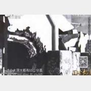 20150109国宝档案视频和笔记:揭秘皇家相册,夜盗光绪陵,崇陵,金井