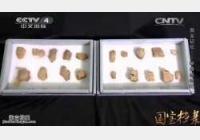 20150207国宝档案视频和笔记:国宝记忆,甲骨恩怨记,殷墟甲骨