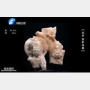 20150430华豫之门视频和笔记:曹家样,记捻儿,开片,苍蝇翅,外销瓷