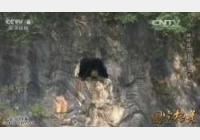 20150610国宝档案视频和笔记:神秘湘西,河溪水库,湘西崖墓