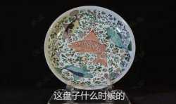 马未都脱口秀《观复锵锵》第2期:清康熙时期粉彩饺子盘,饺子,饺饵
