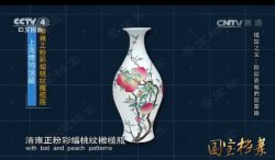 20160722国宝档案视频和笔记:镇馆之宝清