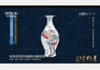 20160722国宝档案视频和笔记:镇馆之宝清雍正粉彩蝠桃纹橄榄瓶